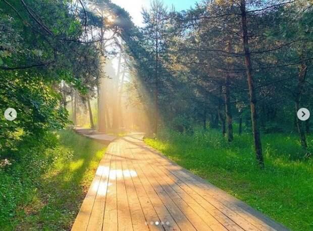 Фото дня: солнечный привет из Хорошево-Мневников