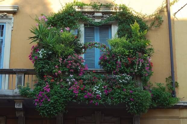 Самые красивые балконы
