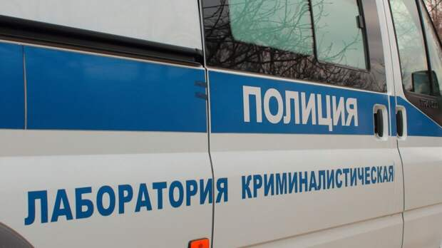 Житель Кемеровской области во время прогулки с собакой наткнулся на расчлененное тело