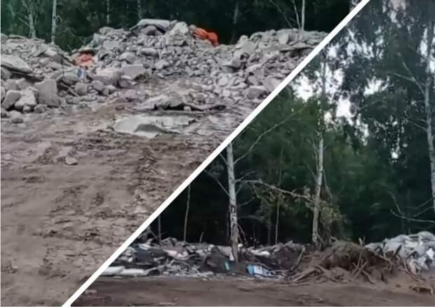 Новосибирцев шокировала свалка строительных материалов в лесу (ВИДЕО)