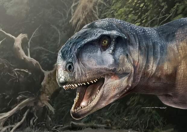 Никто не выпускал динозавра? В США опубликовали видео с животным, похожим на динозавра