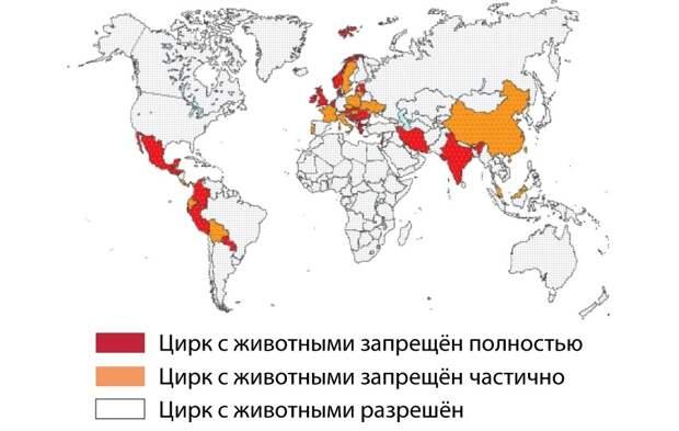 Международный день цирка: какие факты вы не знали