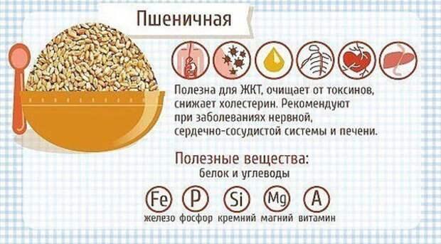 Вы едите каши? А знаете ли Вы почему они полезны и как их употребление может повлиять на организм?
