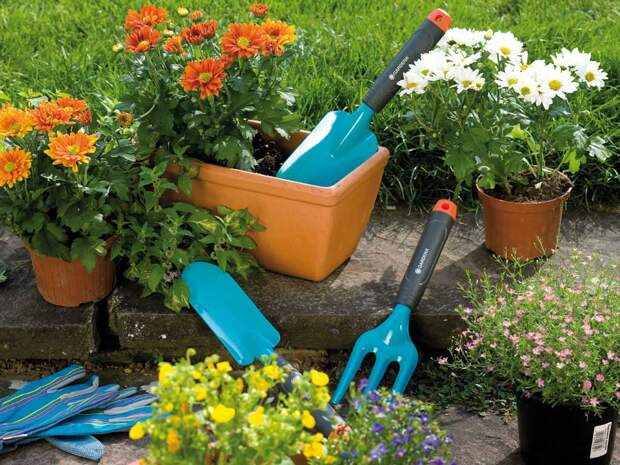 Какие удобрения нужны огороду весной