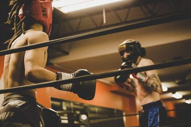 В Северном округе проведут турнир по боксу