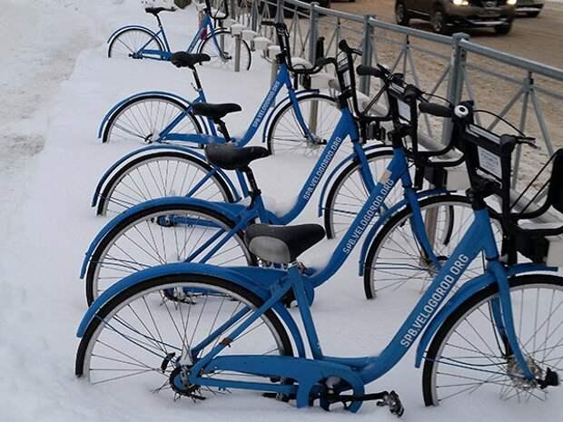 Петербург лишится проката велосипедов