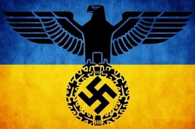 Лишение украинского гражданства обладателей паспортов РФ – это выстрел Киева себе в ногу