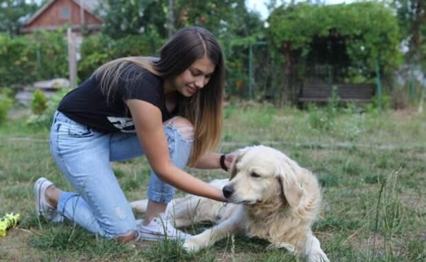 Шесть заблуждений о здоровье и уходе за собакой