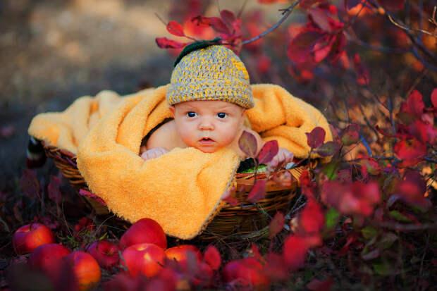 Младенец с доставкой – честные отзывы родителей на новорожденных