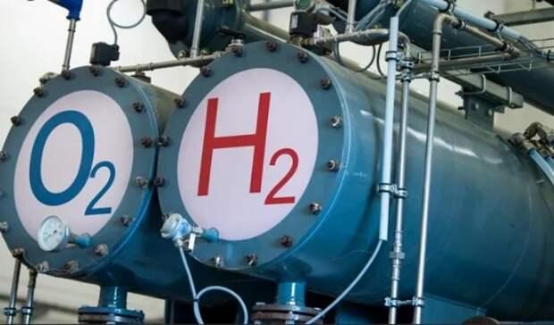 Саакашвили: Украину спасет «зеленый» водород