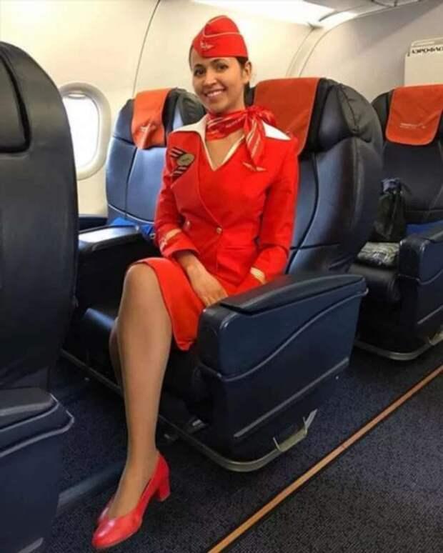 Ножки стюардесс. Подборка chert-poberi-styuardessy-chert-poberi-styuardessy-54320504012021-2 картинка chert-poberi-styuardessy-54320504012021-2