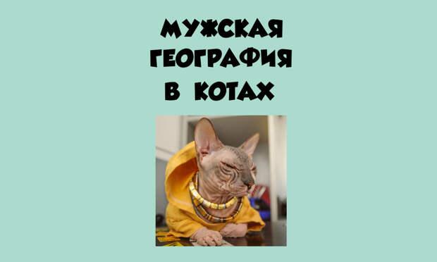 От москвича до омича – мужчины-котики