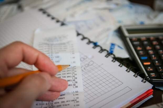 В РФ предложили ввести отрицательный налог для многодетных
