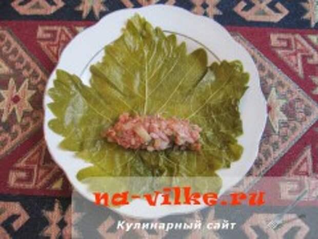 Долма в виноградных листьях с мясом