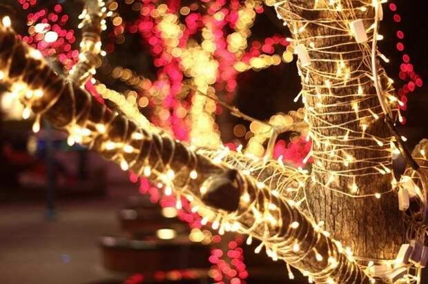 20 атмосферных фотографий, наполненных ожиданием Нового года