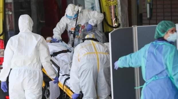 Названа дата окончания пандемии коронавируса в России