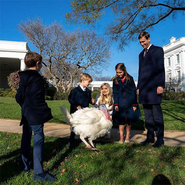 Дональд с Меланией Трамп и индейка Кукуруза приняли участие в традиционной церемонии в Белом доме
