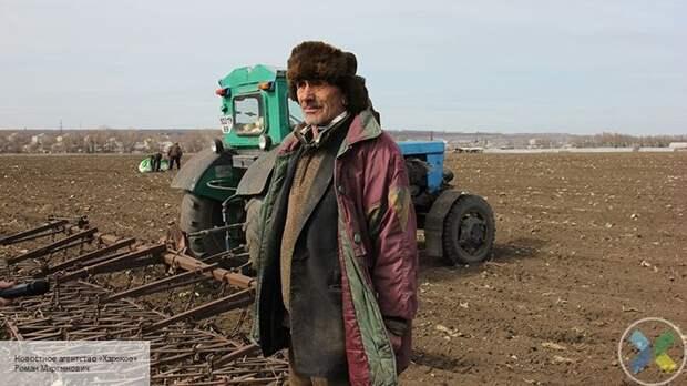 Везут спасать урожай: Польша отправит на Украину спецрейсы за заробитчанами