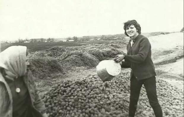 По волнам нашей памяти. На картошку!