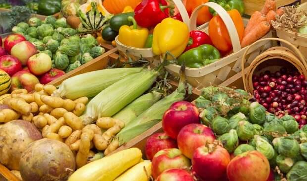 Что выгоднее: сад, огород или ягодник