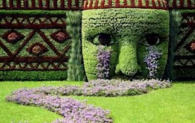 Топиари – живое искусство красиво, факты