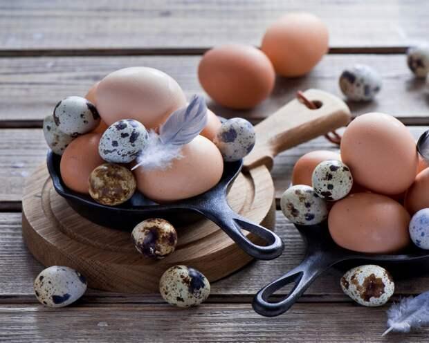 Яйца для Мейн Куна