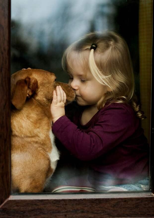 Каждый поступок, каждые отношения окружены атмосферой тишины. Дружба не нуждается в словах дети, животные, фотография