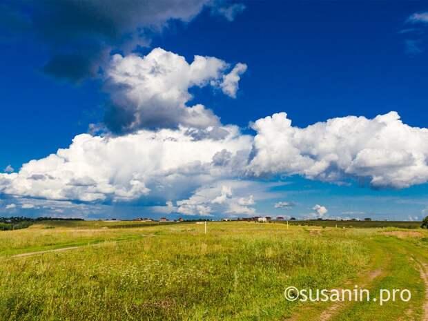 Жители Удмуртии предложили Корпорации развития построить «Диснейленд»