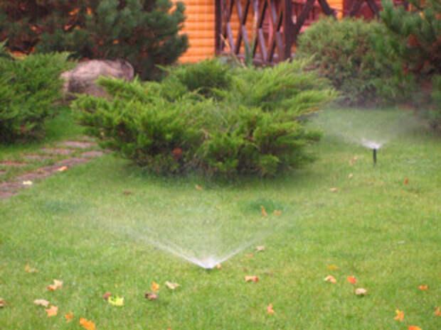 Полив растений для ленивых дачников