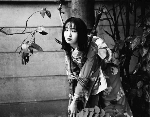 Искусство сибари: провокационные эротические снимки японского мастера