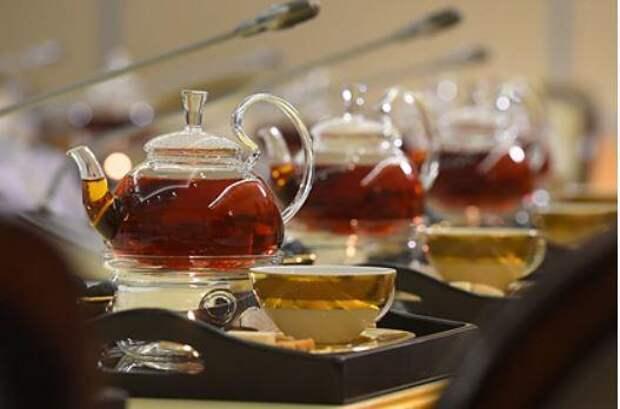 Россиян предупредили об опасности чая