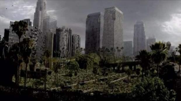 Что станет с планетой, если люди уснут на тысячу лет (+видео)