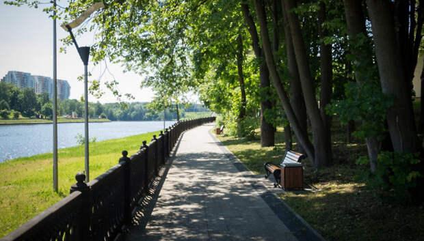 Солнечная погода ожидает жителей Московского региона на выходных