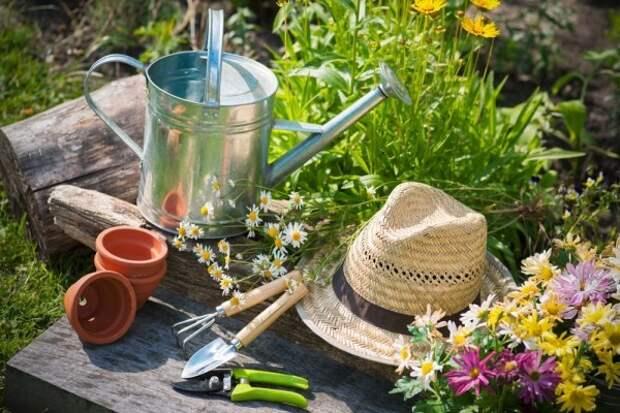eco gardening
