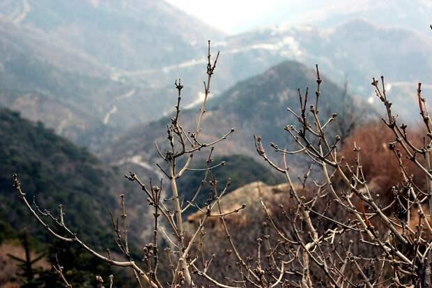 MountTai05 Тайшань. Гора Восхода