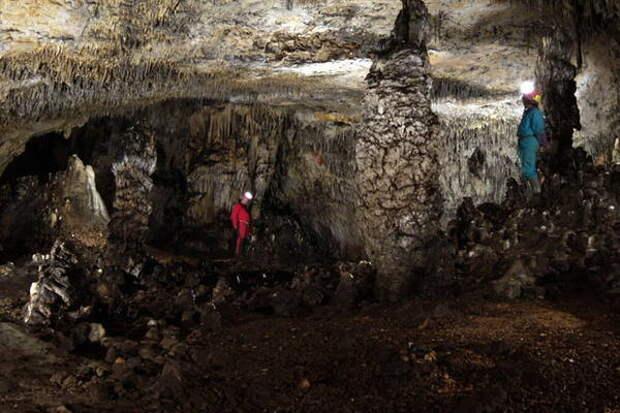 Путешествия древних людей: ДНК неандертальцев рассказала о двух волнах миграции