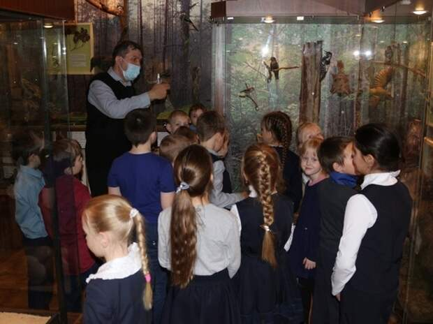 В Андреапольском музее школьникам показали природу Западной Двины