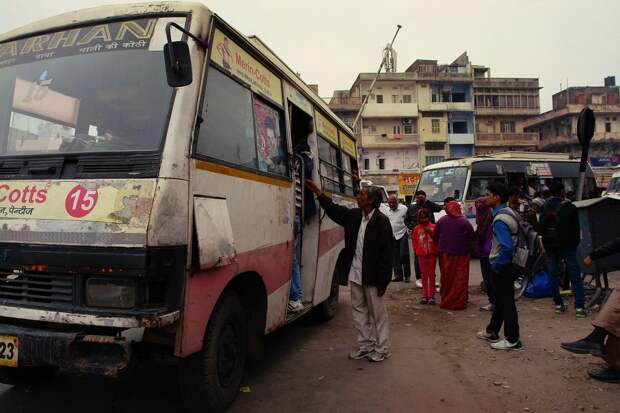 Jaipur24 Оттенки серого. Оттенки розового