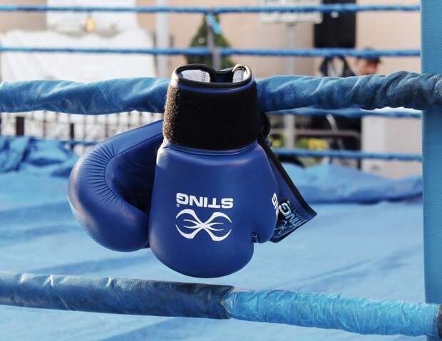 Рой Джонс наденет шлем в бою против Майка Тайсона