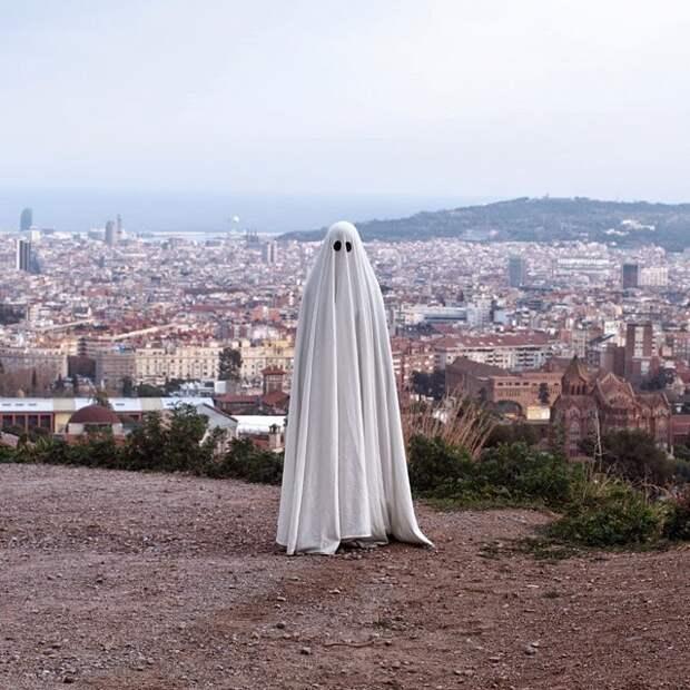 Мистер Бу – добрый призрак Инстаграма
