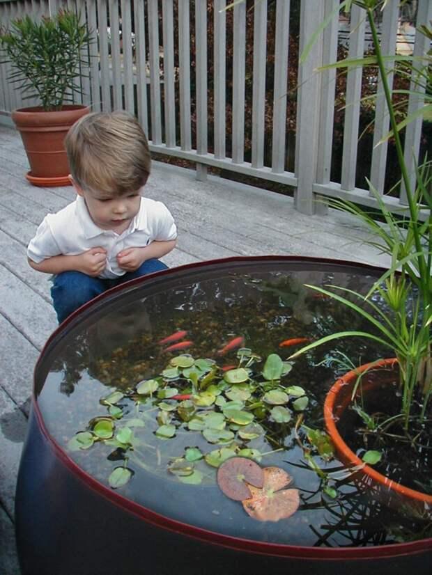 23 прекрасных идеи мини-пруда для красивого сада
