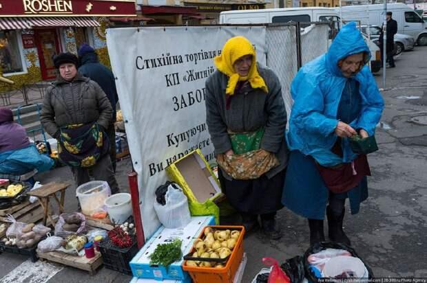 В «аграрной сверхдержаве» не идут дела: Политик сравнил цены в ЕС и на Украине