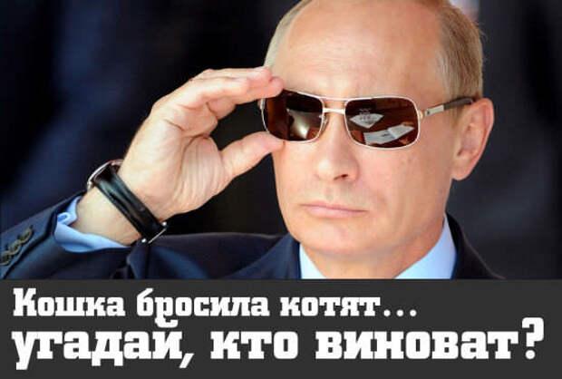 Fox News: Во всех бедах этой планеты виноват Путин