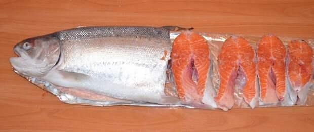 Рыба для Мейн Куна