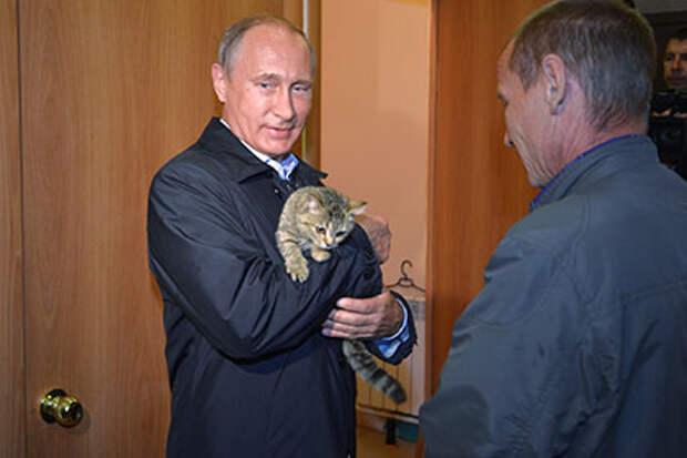 Ми-ми-ми. Путин сфотографировался с кошкой Муркой в Хакасии