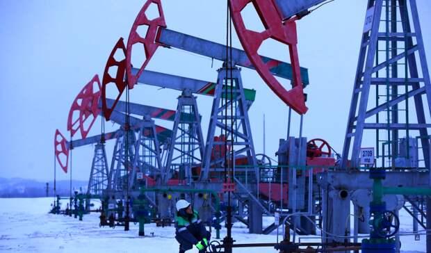 Новак: добыча нефти вРФв2021 году будет «чуть выше», чем в2020 году