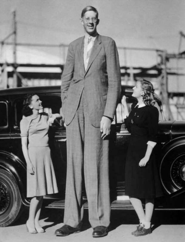 273 см — почему родители уничтожили память о самом высоком человеке в мире (4 фото)