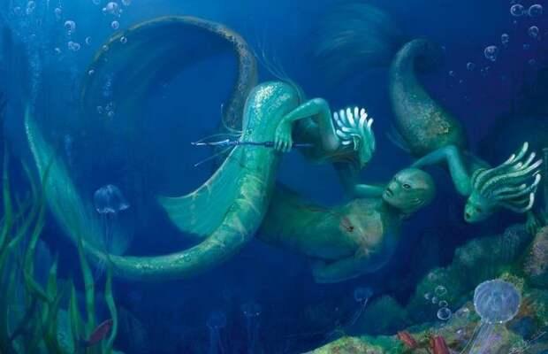 Разумная жизнь под водой: почему мы о ней так мало знаем