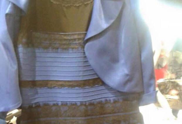 «Мои коллеги видят платье золотисто-белым»  Профессор МГУ рассуждает о загадке платья