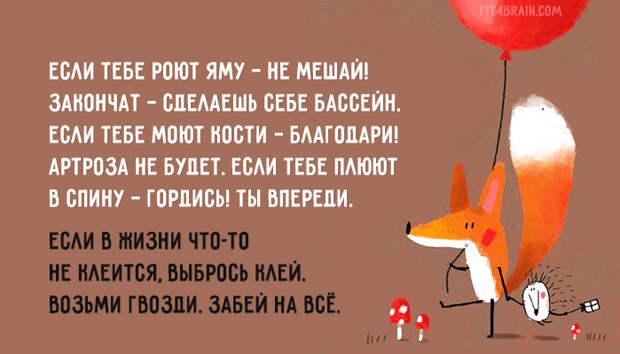 fox-advice